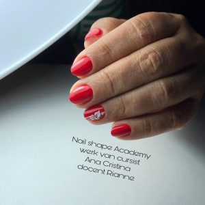 Online workshop Strak Lakken riwa nails & beauty